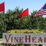 entrance-flags